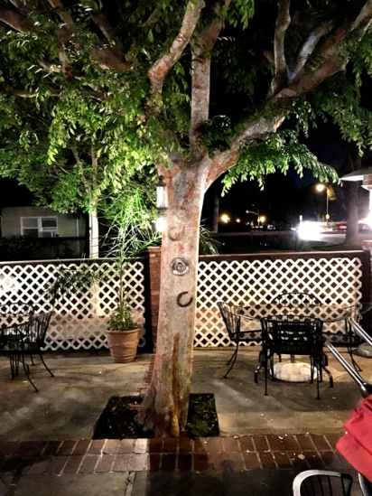 Rib Ranch y patio tree