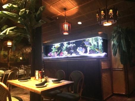 DTH aquariumDamons06
