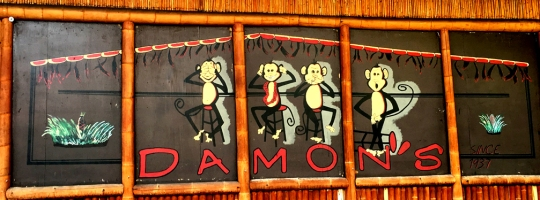 DTH Damons monkeys 02
