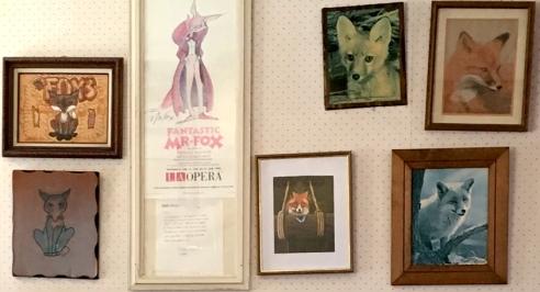 FoxsFoxPicturesnl